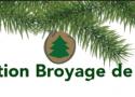Broyage-sapins 2
